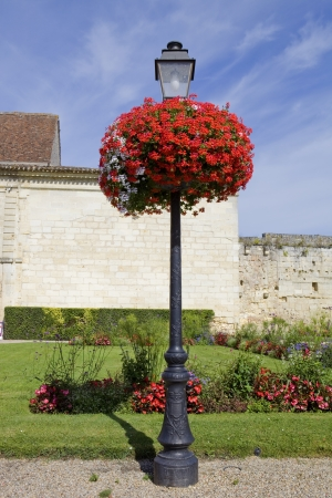 small garden at saint emilion, aquitaine, France Stock Photo - 16755722