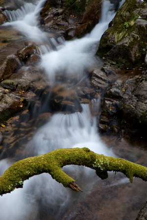 small river: small river in the portuguese national park