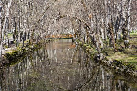 Covao d'ametade im Naturpark Serra da Estrela. Portugal Standard-Bild - 80853518
