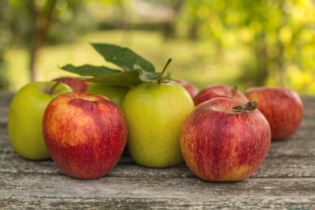 Ripe apples on a wooden table, on green outdoor background Stock Photo
