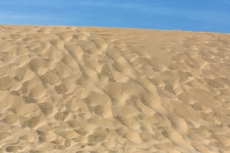 the dunes of the famous beach of Praia da Bordeira. This beach is a part of famous tourist region of Algarve.