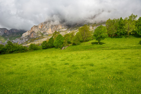 View of the fields and mountains at Picos de Europa, Asturias, Spain