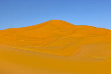 sahara desert dunes, in Morocco 스톡 콘텐츠