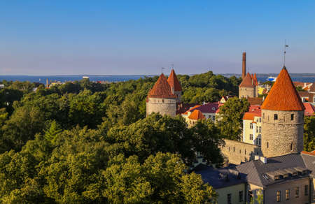 Tallinn, Estonia.Top view of the old town in the summer 스톡 콘텐츠