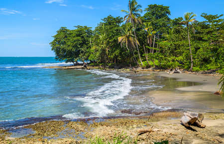Tropical ocean beach with palm trees in costa rica