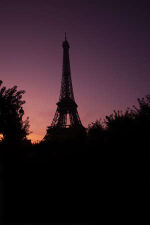 View of Eiffel tower, view from Champ de Mars in the twilight with a blue sky in a background, in Paris, France.