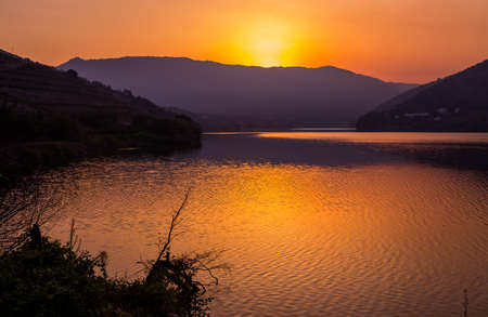 Douro river valley on sunset in the north of Portugal Stok Fotoğraf