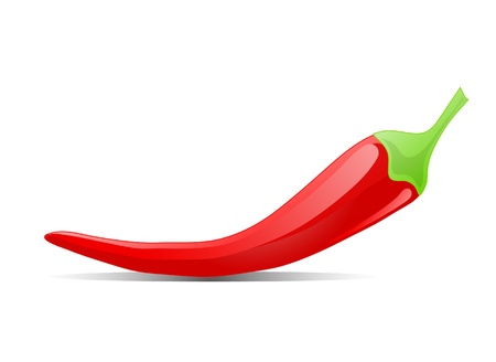 Red hot chilly pepper Vector