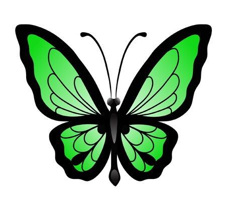 green butterfly: Abstract big green butterfly Illustration