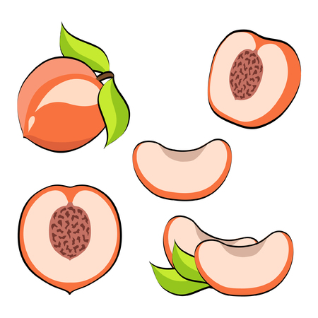 Set of pop art retro comic style vector peach. Pink peaches, whole and cut, isolated on white background, collection of illustrations eps 10