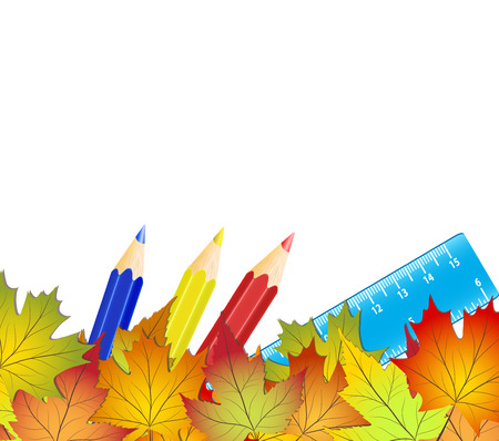 Concept back to school, colorful autumn leaves, color pencils and rulers on white background, stock vector illustration