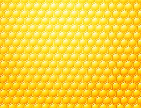Bee honeycombs background, template for your design, stock vector illustration Standard-Bild - 114688096