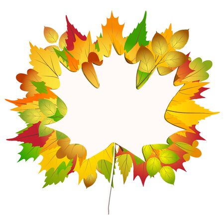 Colorful autumn maple and oak leaves bouquet on white paper Back to school background stock Vector illustration