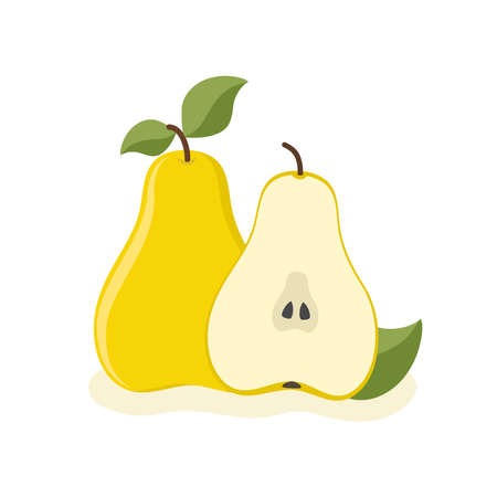 Two sweet pear in cartoon style on white, stock vector illustration  イラスト・ベクター素材