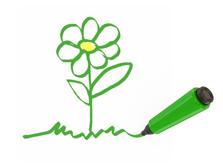 Green marker-pen drawing a flower.Isolated on white background. photo