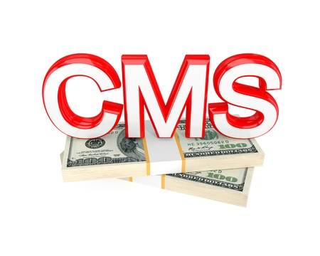 Word CMS and money packs. 3d rendered. Isolated on white background. photo