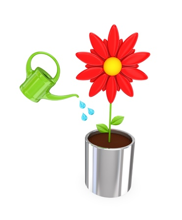 bailer: Big red flower in a chromed pot and green bailer. 3D rendered. Isolated on white background.