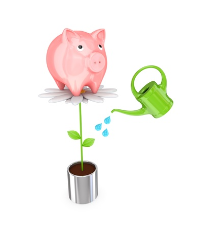 passive earnings: Piggy bank on a big flower and a bailer. 3d rendered. Isolated on white background.