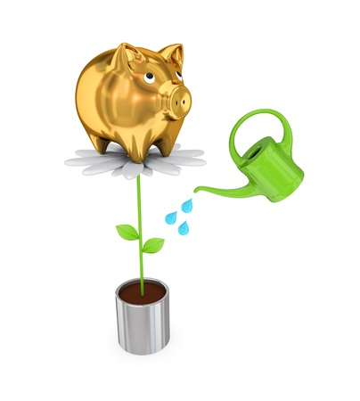 Piggy bank on a big flower and a bailer. 3d rendered. Isolated on white background. photo
