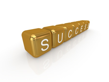 Word SUCCESS. Isolated on white background.3d rendered. photo