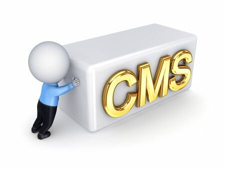 3d small person pushing a word CMS  photo