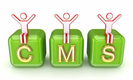 CMS concept  Stock Photo - 14073398