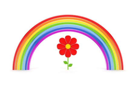 Rainbow and red flower  photo