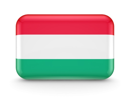 Hungarian flag icon  photo
