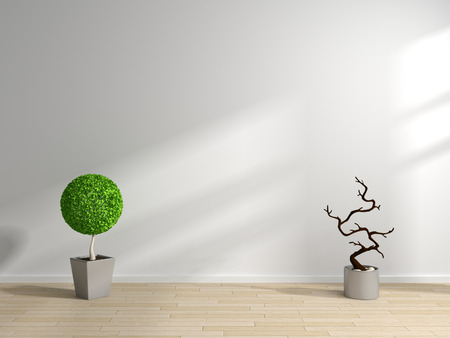 laminated: Modern interior composition with decorative plants on laminated floor