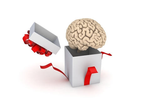 cerebra: Human brain at a gift box. Isolated on white. Stock Photo