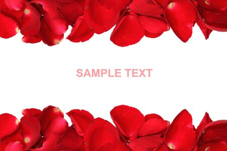 Rose Petals on top and Bottom frame, you can put your text in the center photo