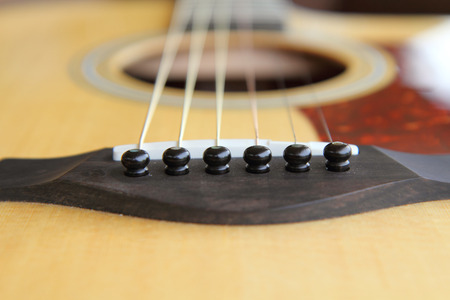 Bridge Pins to lock the guitar string.s