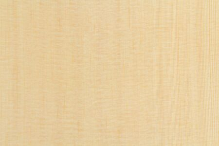 sitka: Top Wood of acoustic guitar Stock Photo