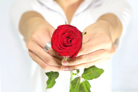consign: Rose for you