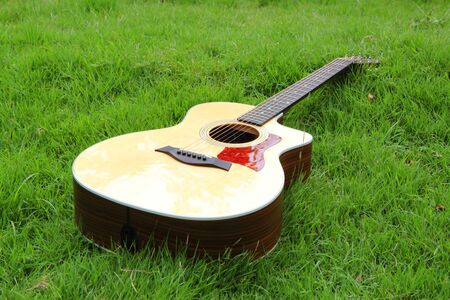 acoustic guitar on grass  acoustic guitar in the park
