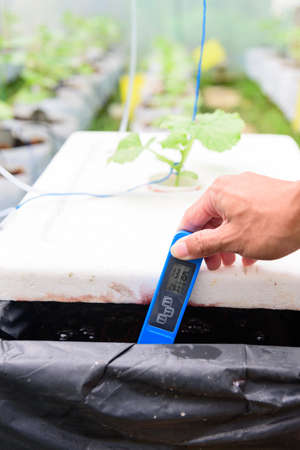 Check EC value of of water bin of hydroponics system