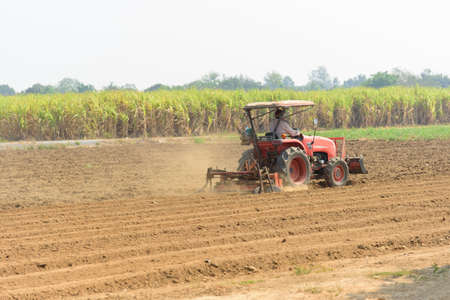 Farmer drive the Tractor Plow the soil for prepair sapling the vegetable Stock Photo