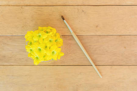 paintbrush and melon flower on wood plate - Item for Pollinate of Melon flower