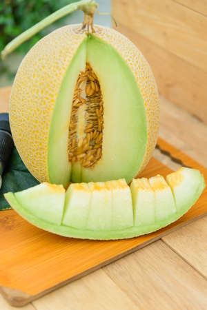 piece of fresh yellow galia melon on the plate 版權商用圖片