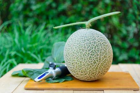 fresh orange melon on the wood plate