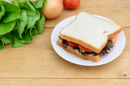 Sandwich tuna in white dish