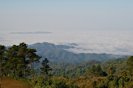 view of a sea of mist on top of the mountain on the way to Pai city, Maehongson is one of the northern provinces of Thailand Stock Photo