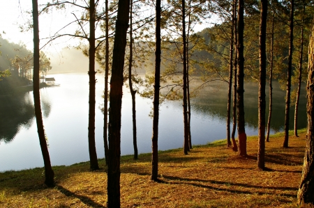 Morning sunshine at pang-ung  national park, Maehongson Province, North of Thailand