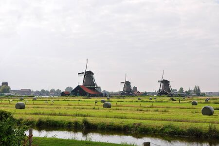 Dutch windmill and grassland in Volendam village, Dutch countryside, Netherlands