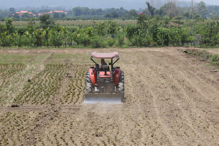 farm field: Small tractors are currently plough soil page.