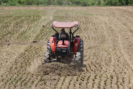 plough machine: Small tractors are currently plough soil page.