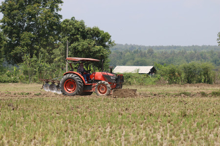 plough: Small tractors are currently plough soil page.
