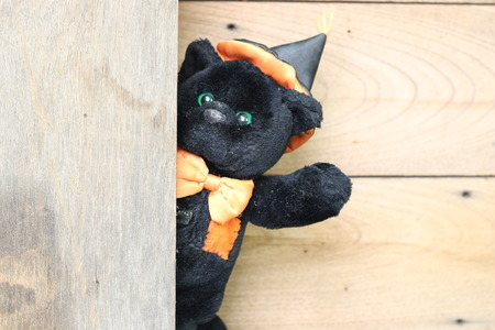valentine s day teddy bear: Black bear on a wooden floor.