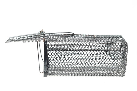 exterminate: Cage Rat Trap on white background