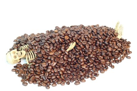 morphology: The skeleton was buried in coffee beans.